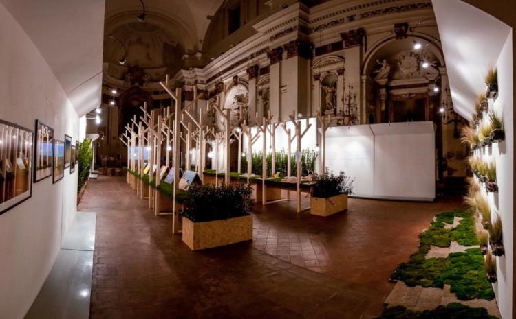polverini lampadari : Naturalmente Architettura Polverini Lampadari